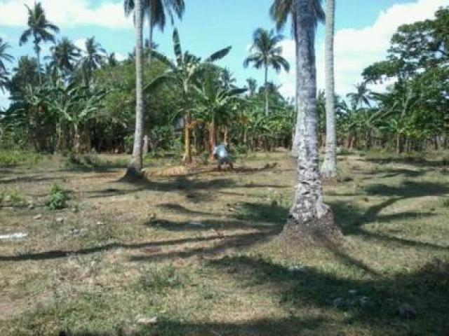 Lot for sale in Pagsanjan Laguna