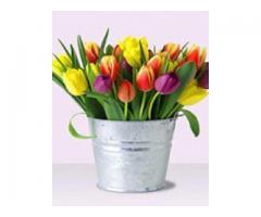 FlowerBlooms.com.ph