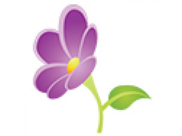 Tin's Flower Shop