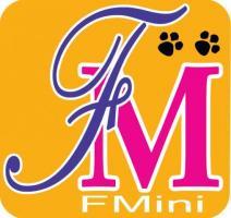 FMini Online Shopping