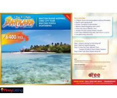 AREE TRAVEL&TOURS:BOHOL TOUR PACKAGE