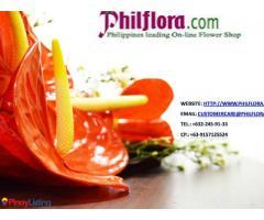 Philflora.com
