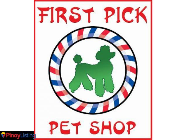 pet grooming and wellness facilities Dog grooming, in particular, can be an important part of your pet's health and  wellness care, too a quality dog grooming session gives us another chance to  get.