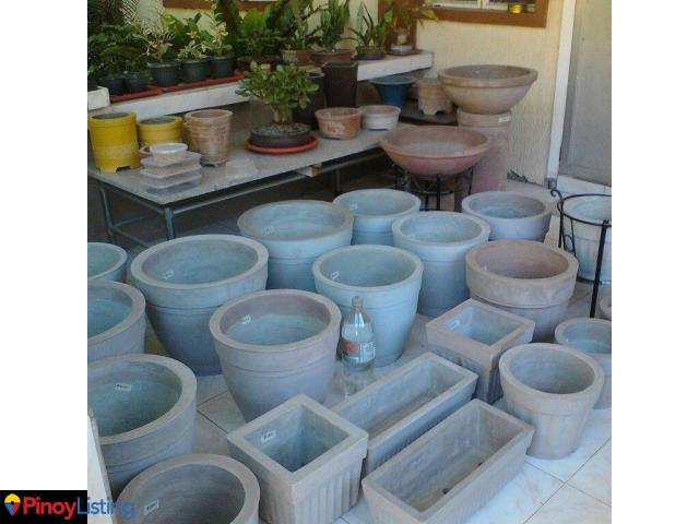 Pots Plants By Maris Bacoor Cavite Pinoy Listing Philippines Business Directory