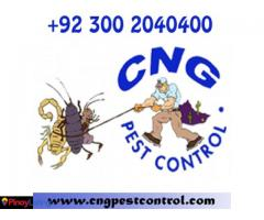 CnG Fumigation ® Total Pest Control in Pakistan, Karachi