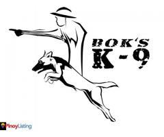 Boks K9 - Dog School Philippines