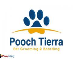 Pooch Tierra Pet Sitting Service