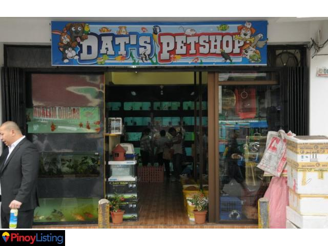 Pet Care in the Philippines