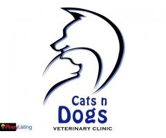 Cats n Dogs Veterinary Clinic